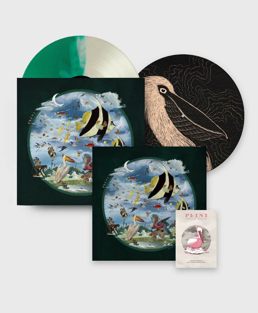 Plini - Impulse Voices - Deluxe Vinyl Bundle