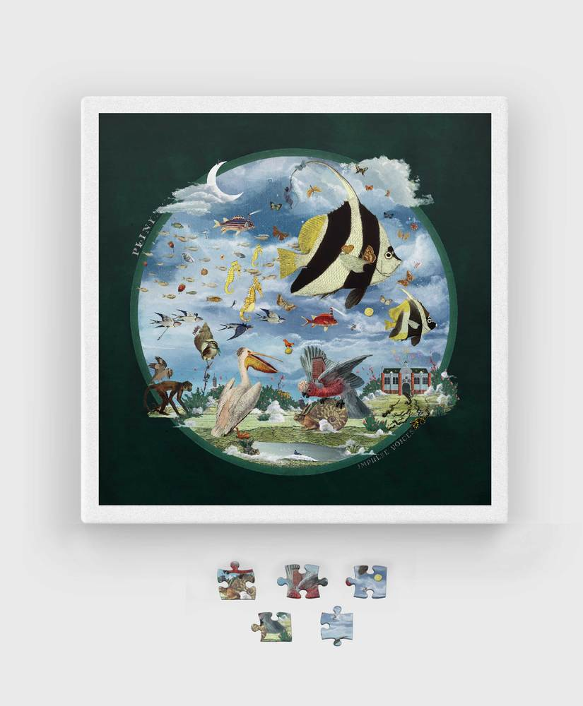 Plini - Impulse Voices - Puzzle - 1000 Piece Jigsaw Puzzle