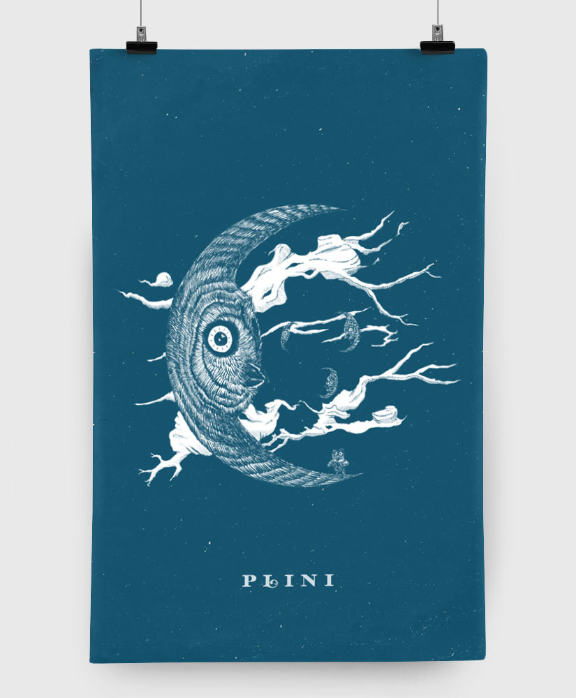 Plini - Owl - Limited Edition 11x17 Print
